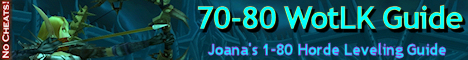 joana wow leveling guide