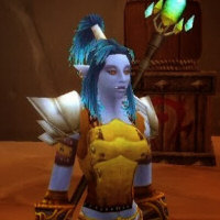 Joana's Classic WoW 1-60 Leveling Guides